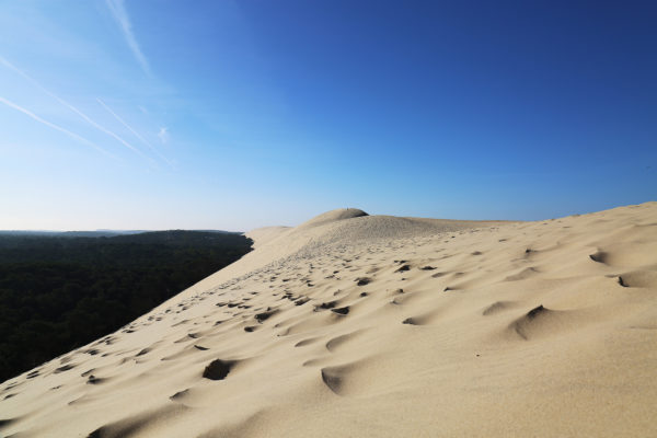 3659, 3659, pilat-dune-2, pilat-dune-2.jpg, 650107, https://tourisme-latestedebuch.com/wp-content/uploads/2018/07/pilat-dune-2.jpg, https://tourisme-latestedebuch.com/decouvrir-la-teste-de-buch/lieux-remarquables/villas-art-deco/pilat-dune-2/, , 5, , , pilat-dune-2, inherit, 3541, 2018-07-25 15:17:38, 2018-07-25 15:17:38, 0, image/jpeg, image, jpeg, https://tourisme-latestedebuch.com/wp-includes/images/media/default.png, 2000, 1333, Array